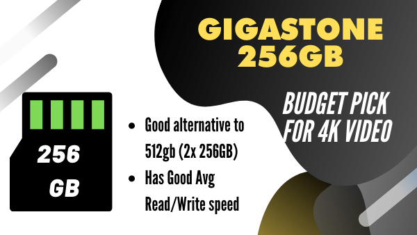 Gigastone_ Best budget Micro SD Card for 4k Video (256GB)
