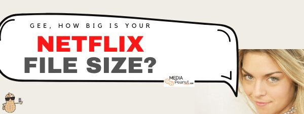 Image of How big are Netflix movies?