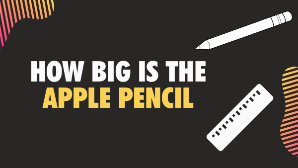 How big is the apple pencil how long weight size everything
