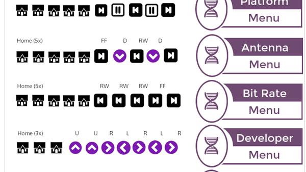 How to get Developer Mode using Roku Secret Codes