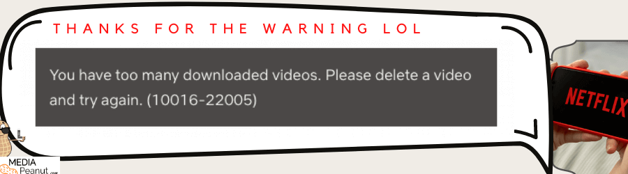 Netflix Download Limit too many downloaded videos