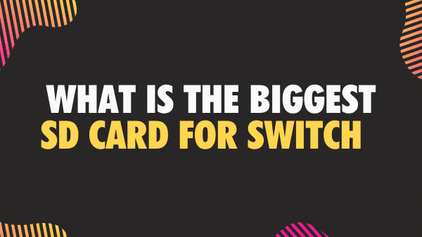 What is the biggest micro SDCard for Switch_